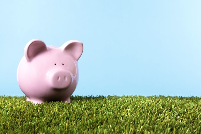 Pink piggy bPiggy bank with grass and blue sky