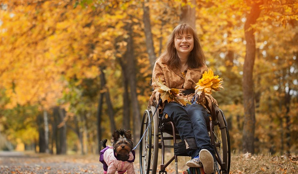 A smiling cheerful girl in a wheelchair with a dog in autumn road